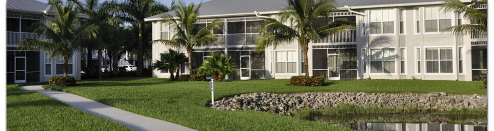 Tampa Commercial Landscaping Brandon St Petersburg And